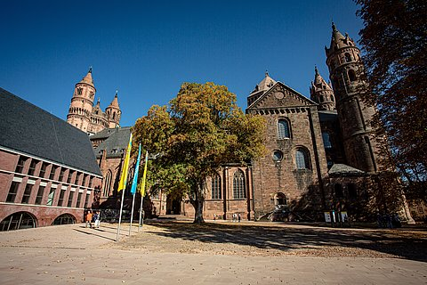 Blick auf den Dom St. Peter in Worms, Worms