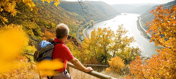 Rheinsteig mit Blick ins Rheintal, Romantischer Rhein