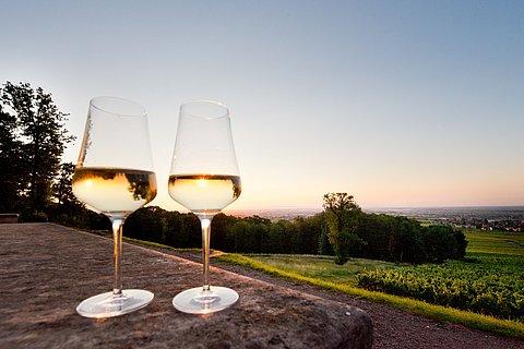 Weingläser vor einer Weinlandschaft in der Pfalz
